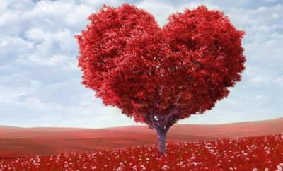 Valentines Day destination with a Heart tree