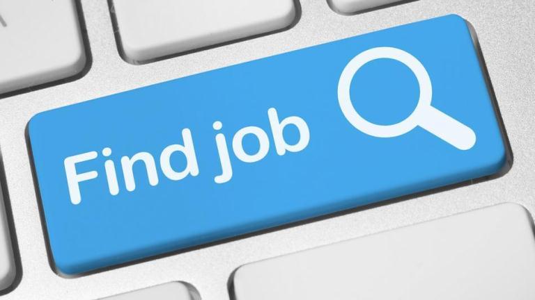 job search banner