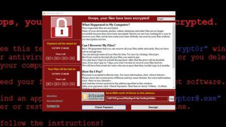 A screen showing Ransomware payment message