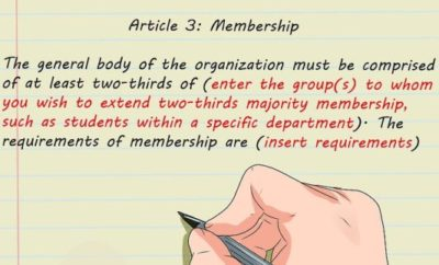 step 4 of a constitution titled Membership