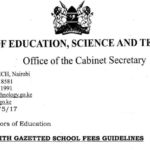 Fee Structure for Secondary Schools in Kenya 2020-2021