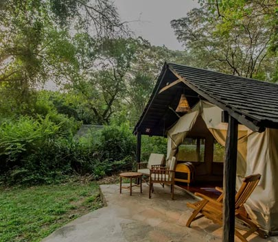 Camping and Glamping in Kenya and Dubai